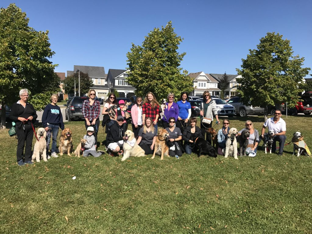 A dog walk fundraiser by Taunton Road Animal Hospital in Oshawa, Ontario for Fundraise for Farley Month.