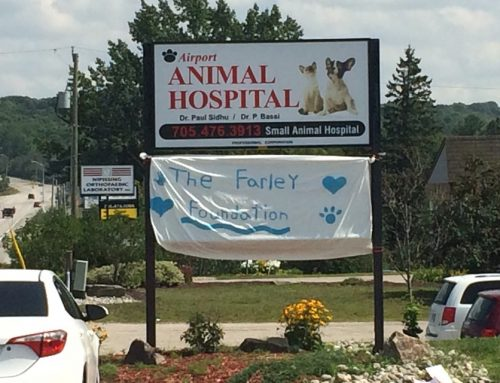 Farley Foundation receives support from local animal hospital