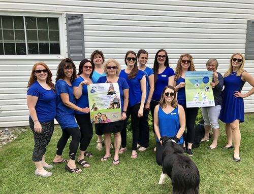 Ontario veterinary clinics raise $265,000 for the Farley Foundation